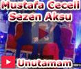 Mustafa Ceceli Sezen Aksu Unutamam Düet video klip izle